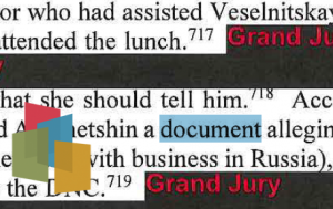 "Redacted document with the word ""document"" highlighted."